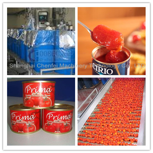 Industrial Tomato Paste Processing Line Energy Saving High Efficiency