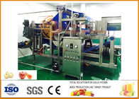 China Automatic 10T/H Capacity Apple Juice Processing Line factory