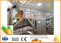 China 304 Stainless Steel Concentrate Pineapple Processing Equipment 20T/H Capacity company