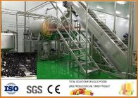 China Turnkey SS304 Blueberry Dried Fruit Production Line CFM-PB-03-22T factory
