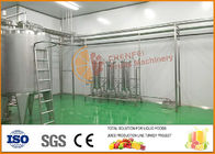 China Professional Tomato Paste Blending And Filling Line CFM-B2-06-10-13 factory
