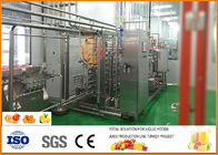 China Small Orange Juice Processing Line 5 T/H Capacity CFM-A-02-352-102 factory