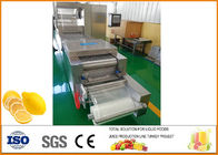 China Freeze-drying Lemon Processing Machinery Silver Color CFM-FD-200 factory