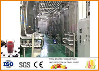 China Blackcurrant Fruit Vinegar Fermentation Equipment With PLC Control System factory