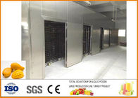 China 4T/D Dried Mango Processing Line , Mango Juice Processing Plant factory