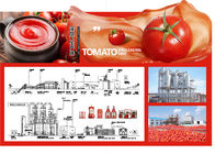 China SS304 Small Scale Ketchup Tomato Paste Production Line Customized Size Easy Operation company