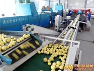 China Easy Operation Lemon Juice Processing Line Machinery In Silver Color CFM-FD-200 factory