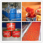 China Complete Tin Can Ketchup Tomato Paste Production Line 1 Year Warranty factory
