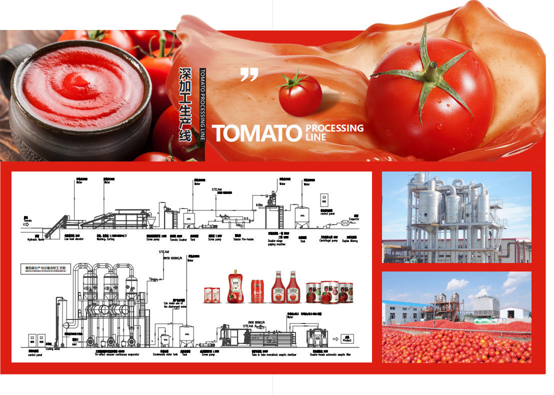 SS304 Small Scale Ketchup Tomato Paste Production Line Customized Size Easy Operation