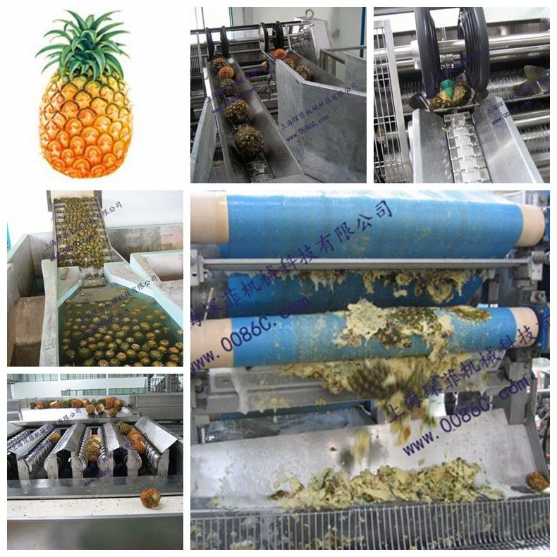 Fruit Processing Automatic Pineapple Processing Line Juice Filling Machine