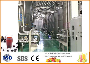 Blackcurrant Fruit Vinegar Fermentation Equipment With PLC Control System