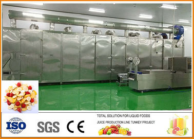 Fruit and Vegetable Dried Fruit Production Line ISO9001 Certification