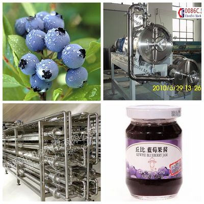 small turnkey blending Blueberry Beverage Processing Plant  Blueberries, blackberries, raspberries, strawberries