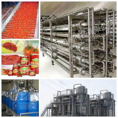 Tomato tin  Canned  Production Line 15-20 Cans / Minute Cans