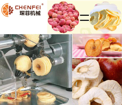 Easy Operattion SS304 Dried Fruit Production Line For Freeze Dried Apple Pear